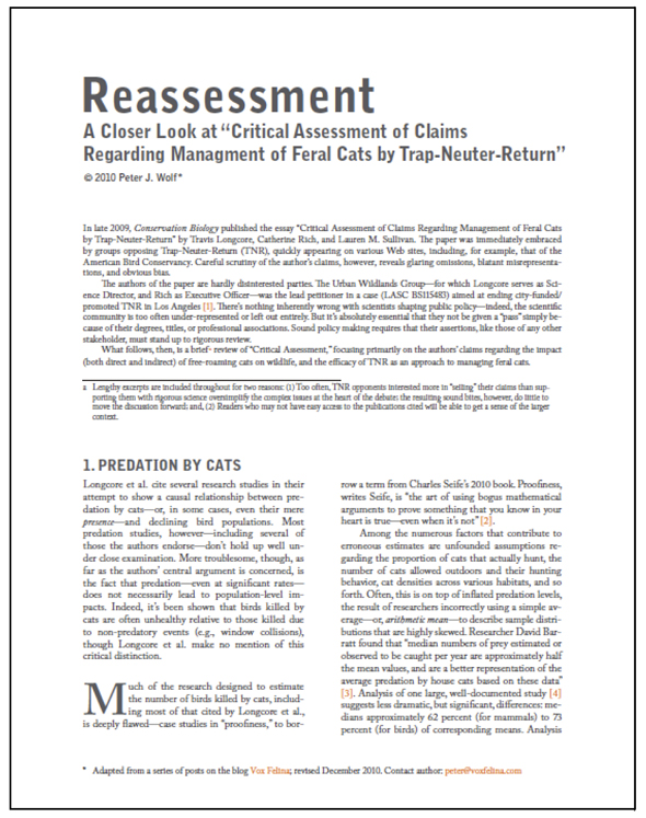 "Image of ""Reassessment"" Document"