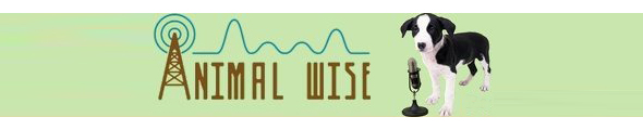 Animal Wise Radio Logo