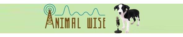 Animal Wise Radio Logo